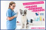 HOSPITAL VETERINÁRIO POPULAR